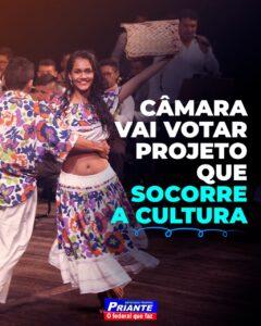 Projeto de Priante ampara setor cultural durante a Covid-19